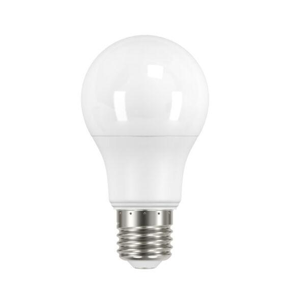 IQ-LED A60 10,5W-CW fényf.
