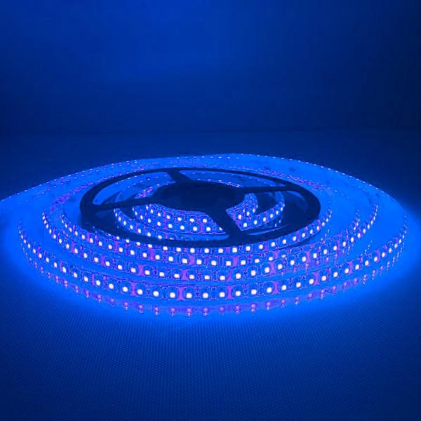 120 LED/m Kültéri Kék